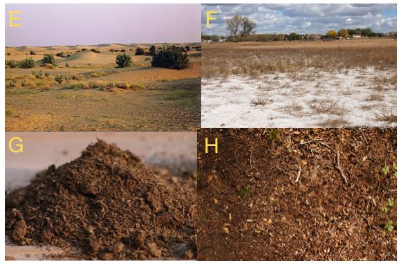 Indian soil for Soil erosion in hindi